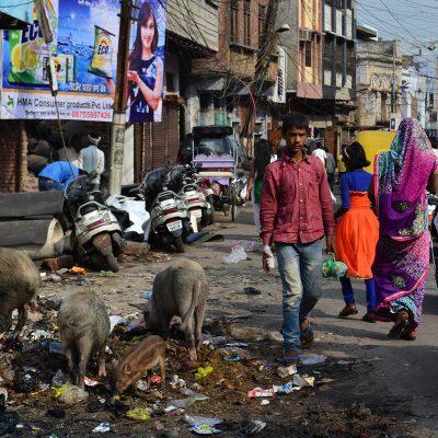 Nueva Delhi, viaje a la ciudad gris