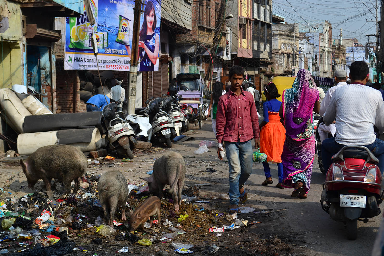 Resultado de imagen para nueva delhi
